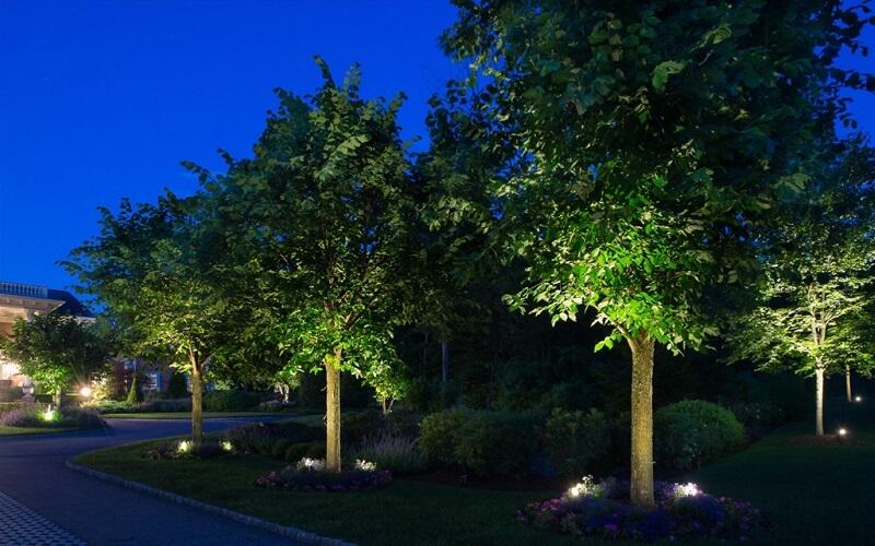 照树灯实景效果图.jpg